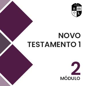 Course Image Novo Testamento I